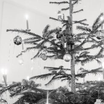 LMS_Weihnachtsfeier_GV_14-11